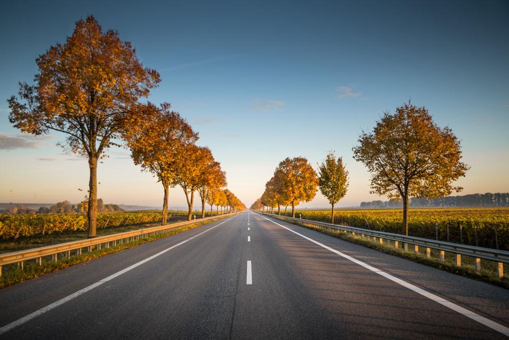 Immer schön den Highway entlang? Wenn es dich glücklich macht - tu es!